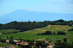 Châteauneuf-du-Pape   Große Weine von der südlichen Rhône